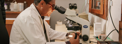 Research banner